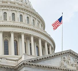 CapitolDomeFlag.jpg